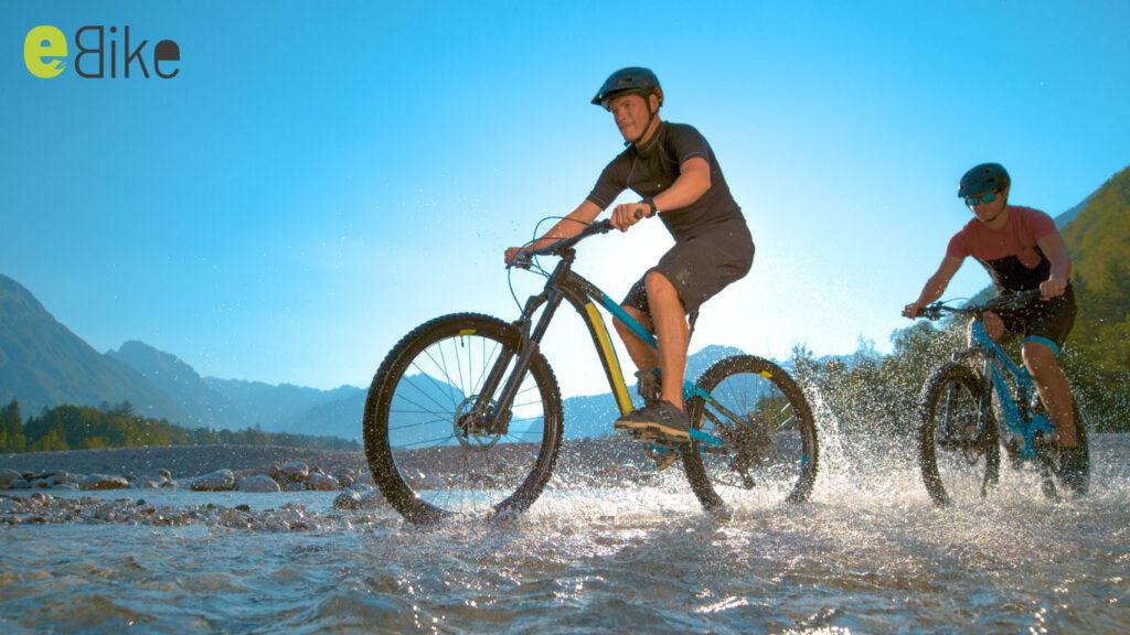 bonus bici elettriche 2020