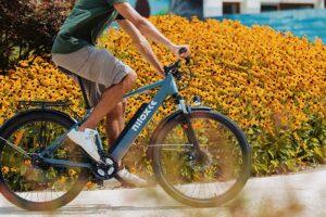 Bicicletta elettrica 250 Watt